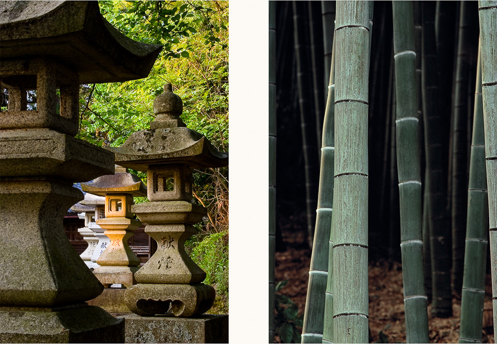 Touroo, Hikone | Bamboo, Arashiyama, Japan